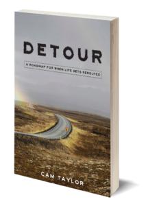 Detour cover 3D