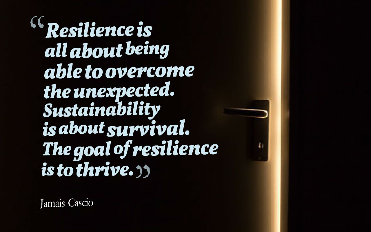 Resilience Quotes Awesome 10 Quotes To Increase Resiliency  Cam Taylor